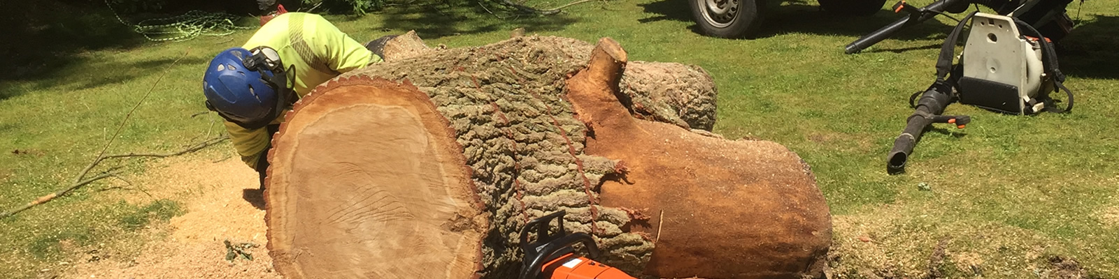 Head4heights Tree Surgery